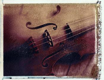 Northampton Native Up For Top Violin Job