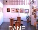 Dane gallery LR2